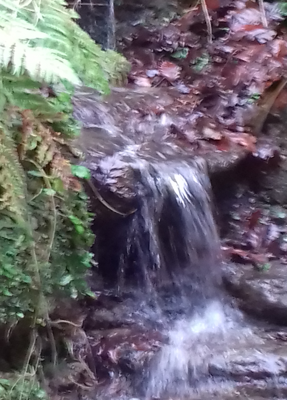 A small waterfall
