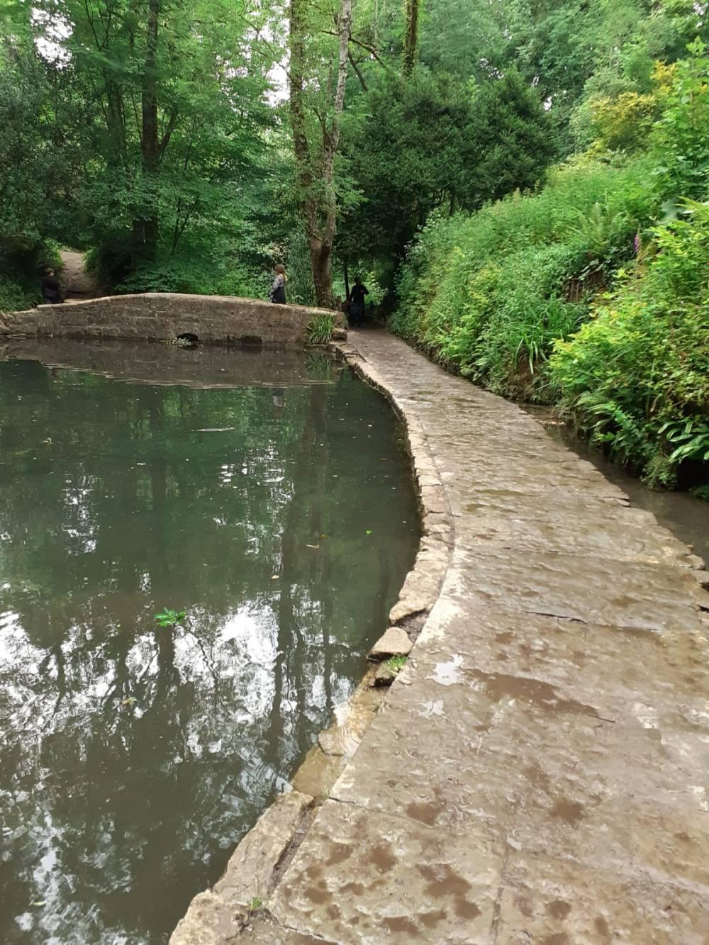 A pool of water in Ninesprings,