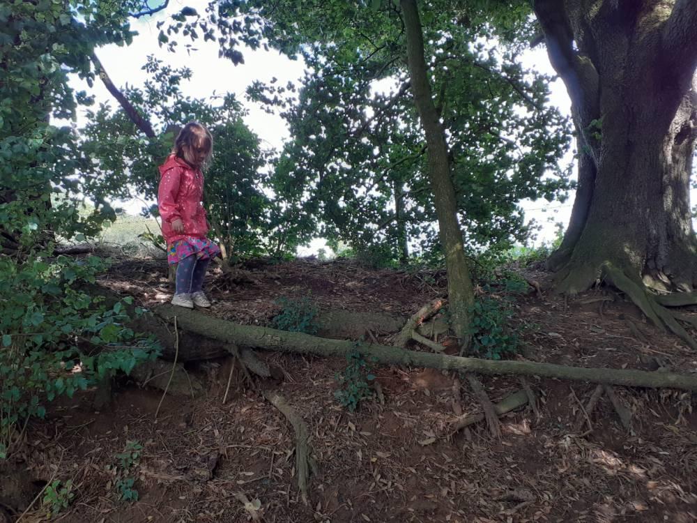 A little girl balancing along a