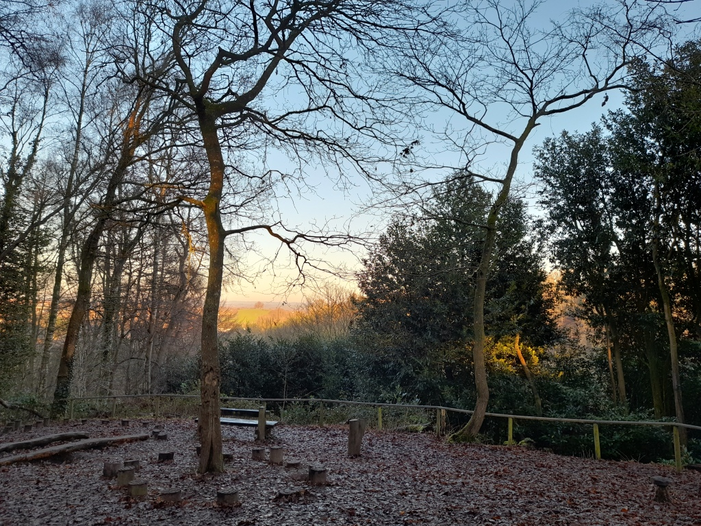 A view from a woodland play area to a hill with trees at the top